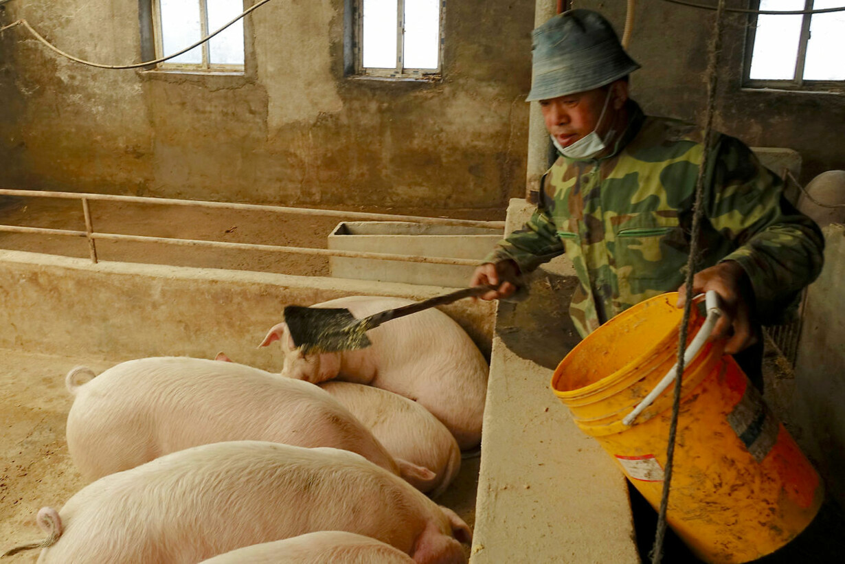 CHINA-POLICY/AGRICULTURE