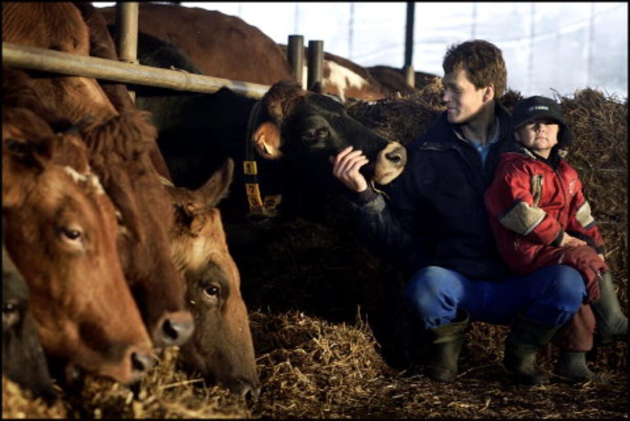 Arla får magten i Europas største mejerikoncern - 1