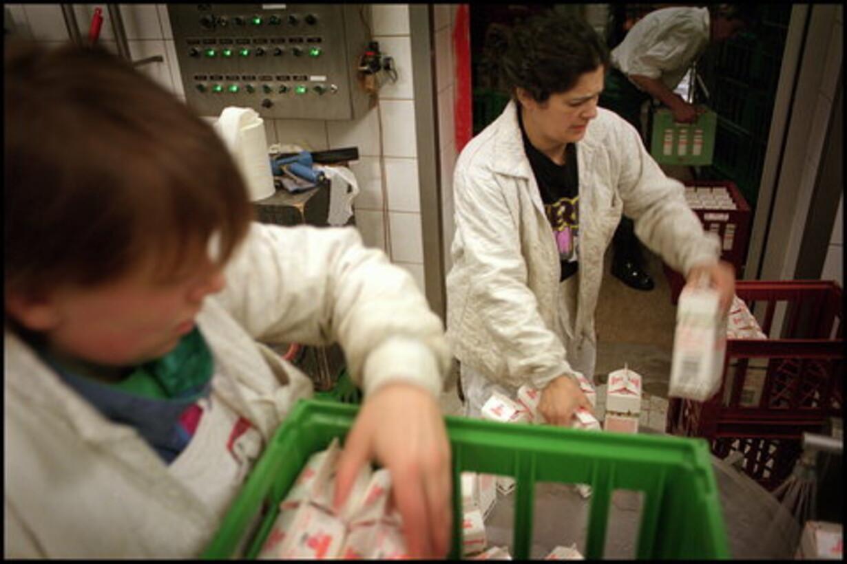 Arla åbner priskrig  på mælk - 1