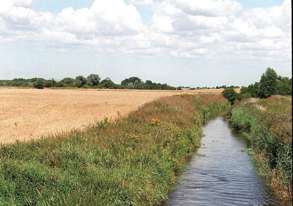 Afsløring: Landmænd står bag miljøministerens nye plan