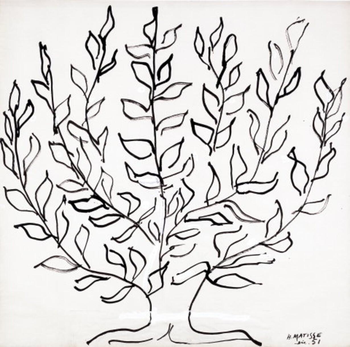 Vejen til Matisse - 1