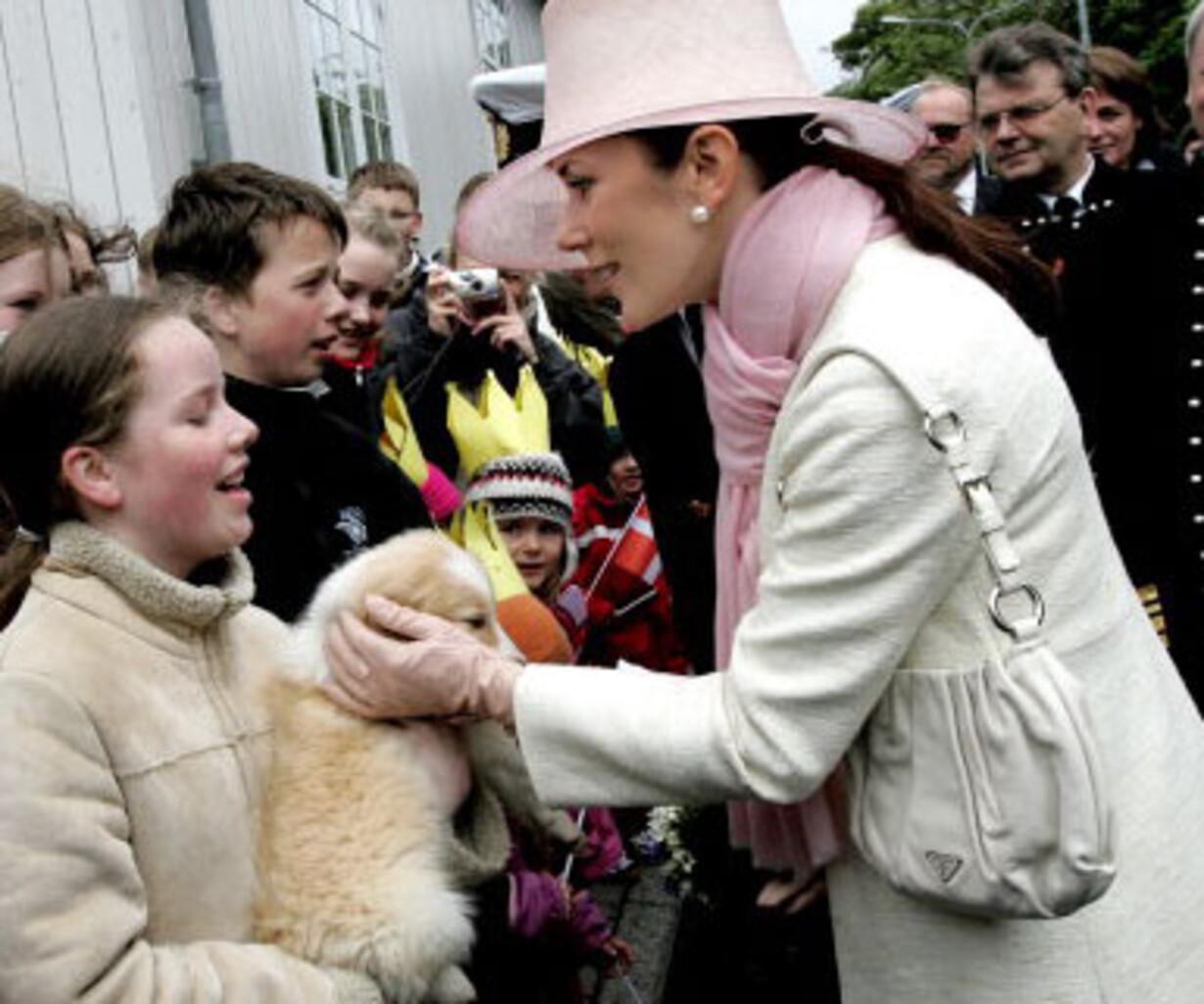 Hunden Giver Nye Venner