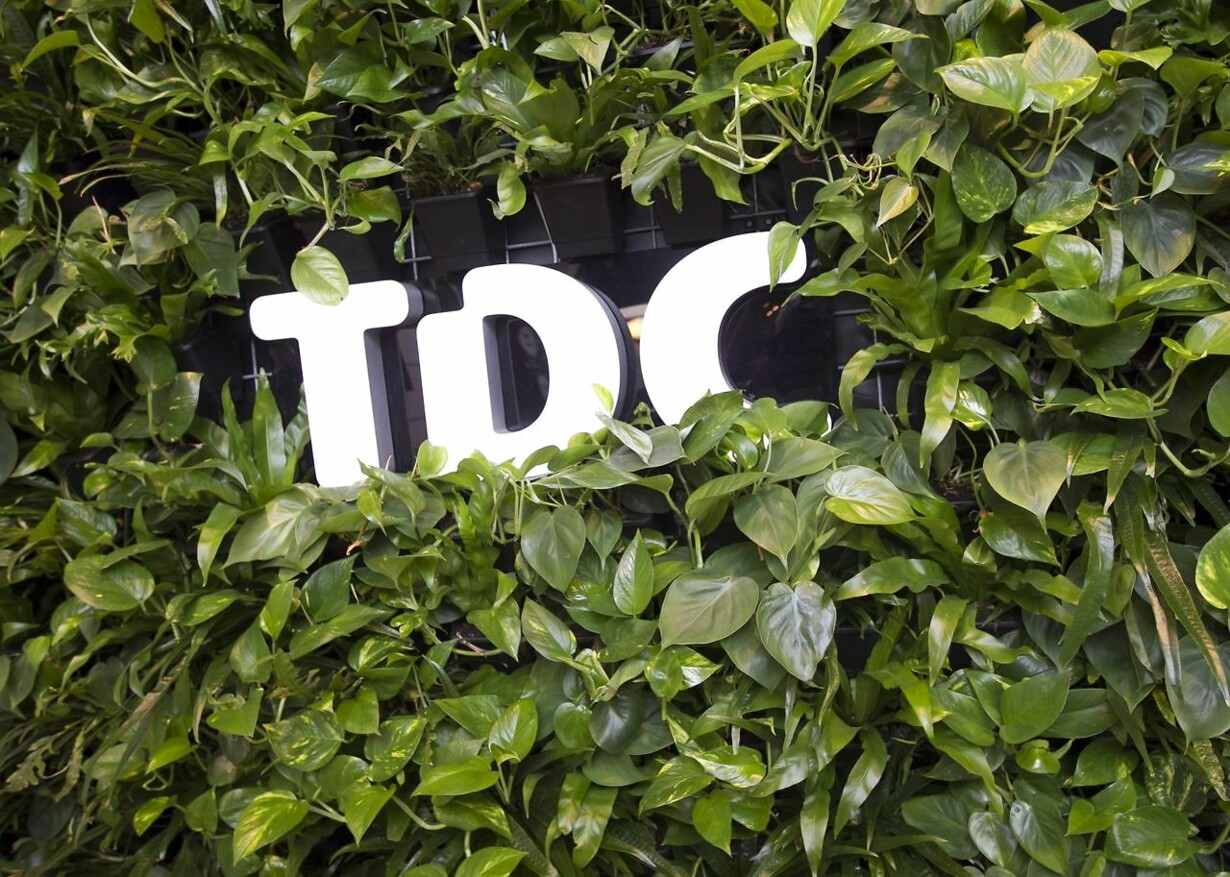TDC præsenterer regnskab
