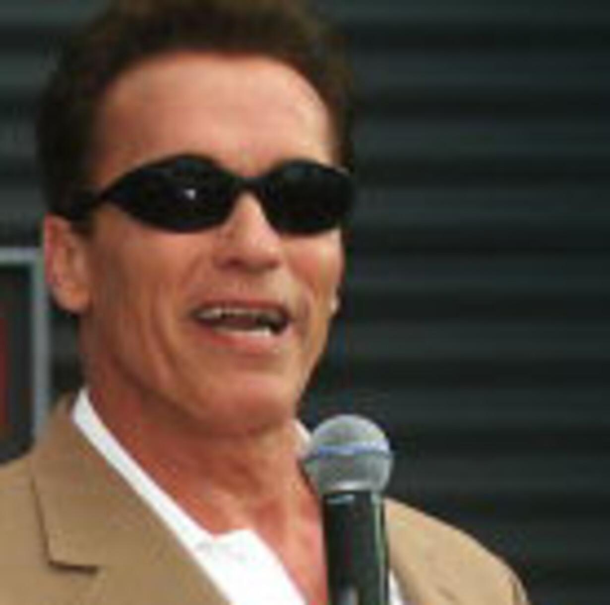 Terminator eller Governator - 1