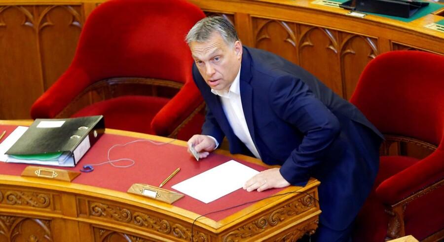 Ungarns premierminister, Viktor Orbán, da det ungarske parlament tirsdag vedtog en ændring af universitetsloven, som truer det anerkendte Central European University på livet. Universitetet er grundlagt af den stærkt liberale forretningsmand, George Soros, der er en af Orbáns ærkefjender. REUTERS/Laszlo Balogh