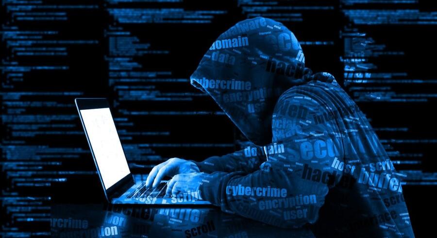 Gennem en international politiindsats er et af de store net af inficerede computere blevet lukket. Arkivfoto: Iris/Scanpix