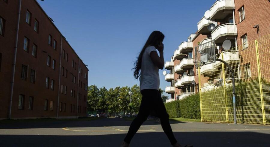 I Mjølnerparken på Nørrebro i København er kriminaliteten ikke - som i mange af de øvrige »socialt udsatte boligområder« - faldet. Tværtimod er antallet af anmeldelser for kriminalitet begået i området steget markant.