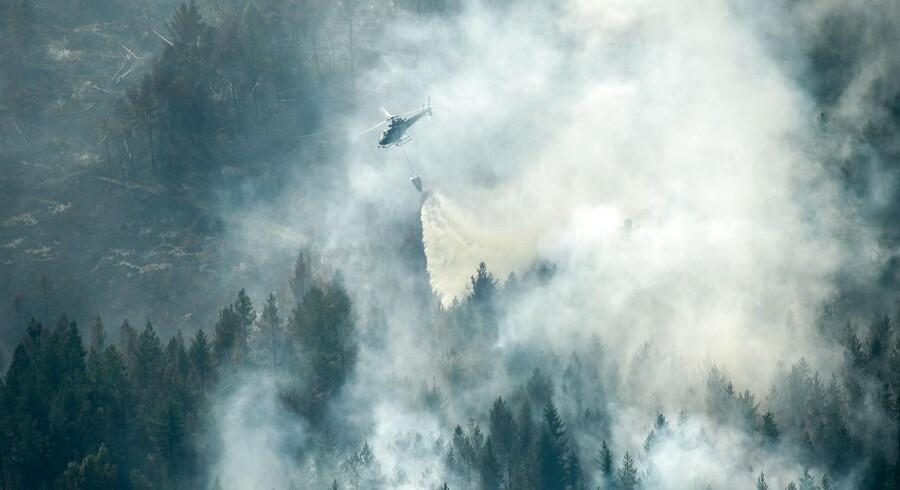 En helikopter kaster vand ud over en af brandene i Ljusdal Kommune, der de seneste døgn har været et af de områder, der er hårdest ramt af de voldsomme skovbrande.