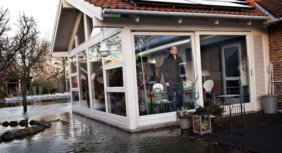 Roskilde Fjord - efter stormen. Lærkevej i Jyllinge.