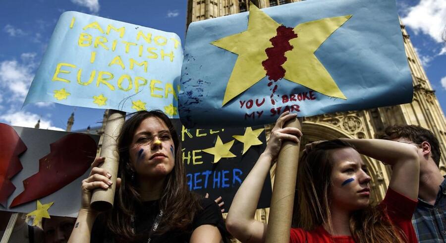 EU-tilhængere i området omkring Westminster.