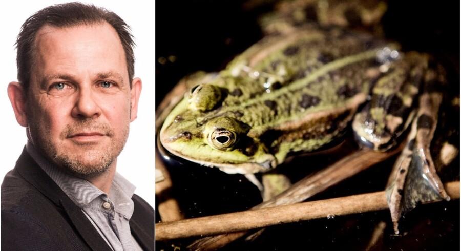 Foto: Søren Bidstrup og Kristian Sæderup