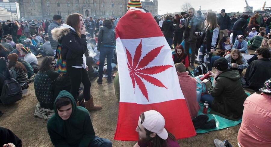 En senatsafstemning torsdag i Canada kan bane vejen for den første lovliggørelse af hash og marihuana i et større vestligt land. Her er det en demonstration i april til fordel for loven på Parliament Hill i Ottawa.