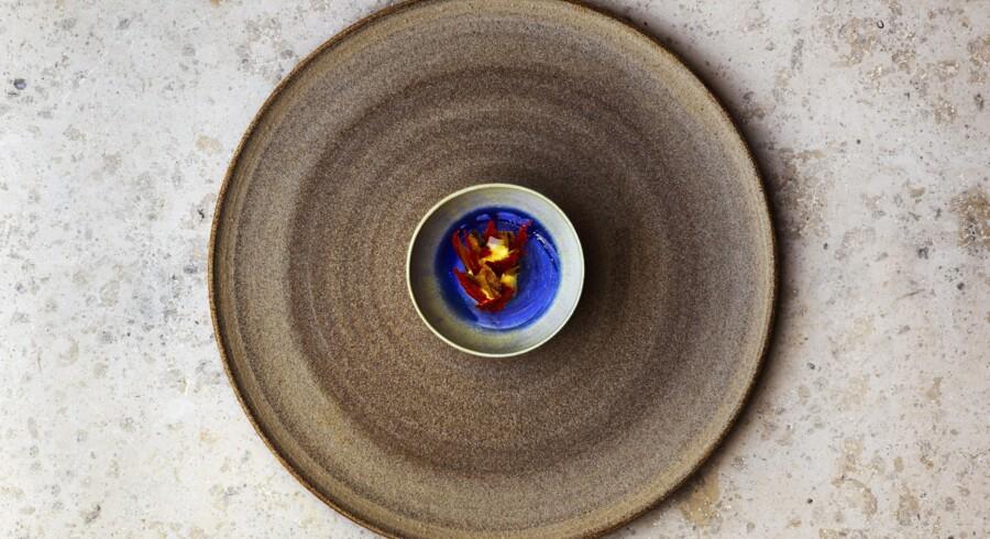 Tørrede æggestokke af søpølse med flødecreme