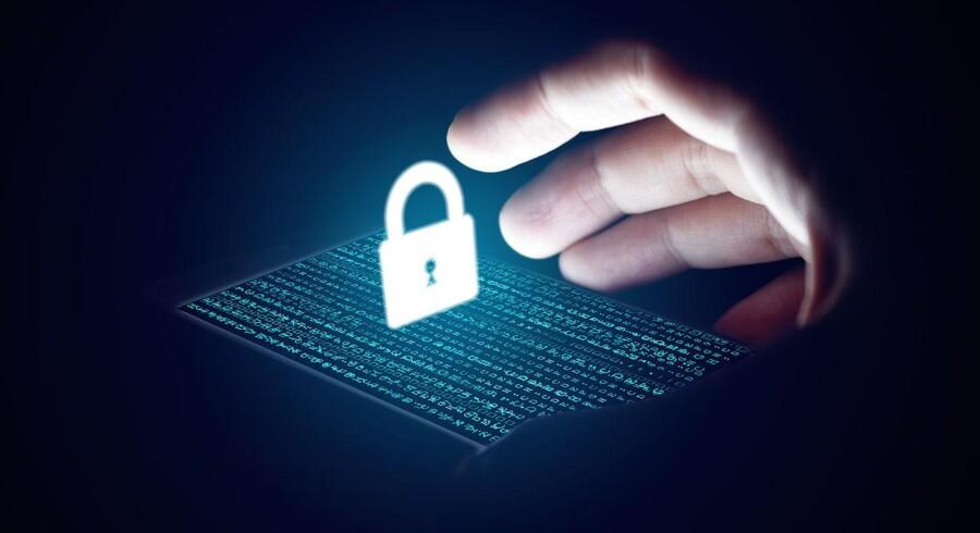 Danske virksomheder og myndigheder er bestemt i farezonen for at blive ramt af hackere, og det kan kun bremses ved et bredt samarbejde, er der enighed om. Arkivfoto: Iris/Scanpix