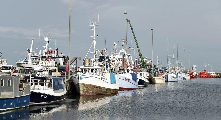 Arkivfoto. Fiskeristyrelsen oplyser, at man - ud over en ny politianmeldelse - har fremsendt yderligere dokumentation til politiet vedrørende de anmeldelser, der blev indgivet tidligere på året.