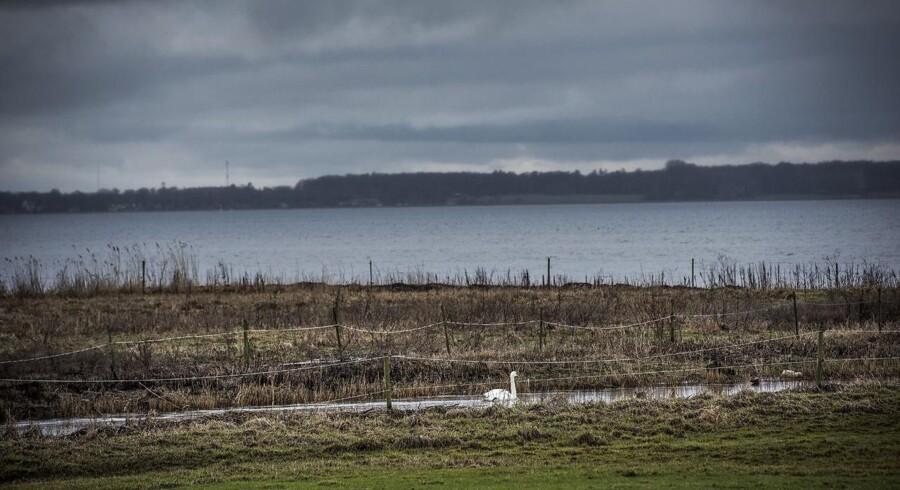 Opposiotionen kalder tre ministre i hastesamråd, fordi der er en risiko for, at landbrugspakken vil forurene det danske grundvand.