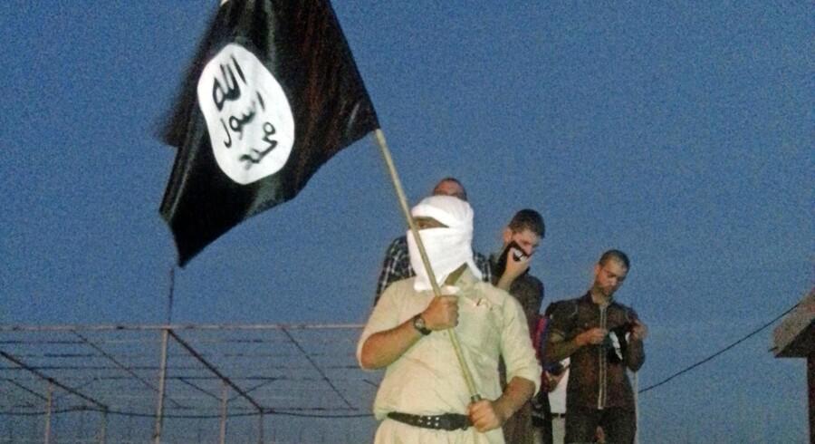 Arkivfoto fra 2014 af en IS-jihadist i propaganda-positur. Foto: Scanpix