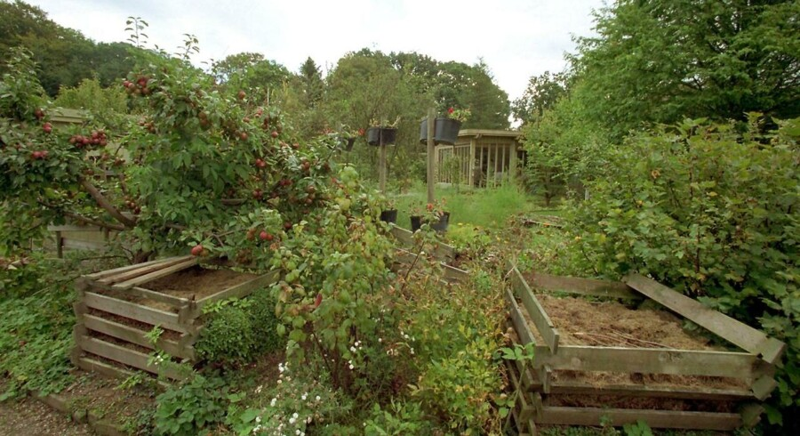 AKRIVFOTO: Haveforening.