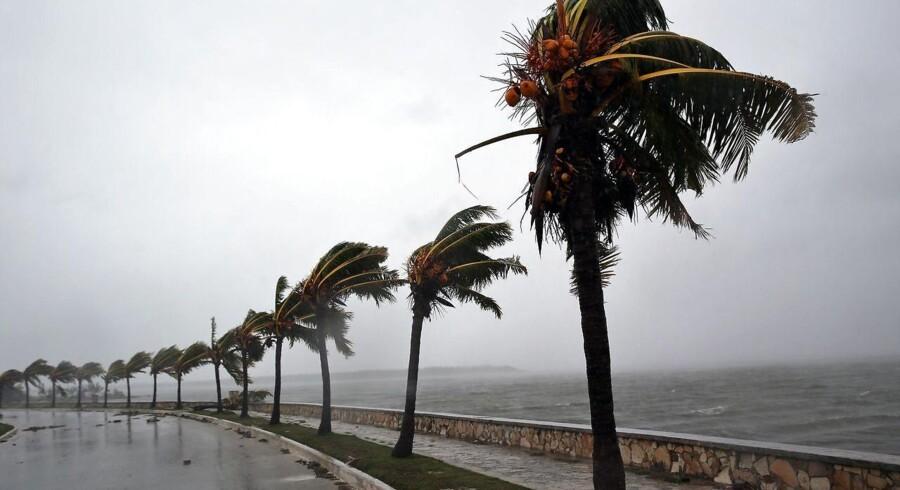 Orkanen Irma ventes at forårsage enorme skader i den amerikanske stat Florida.