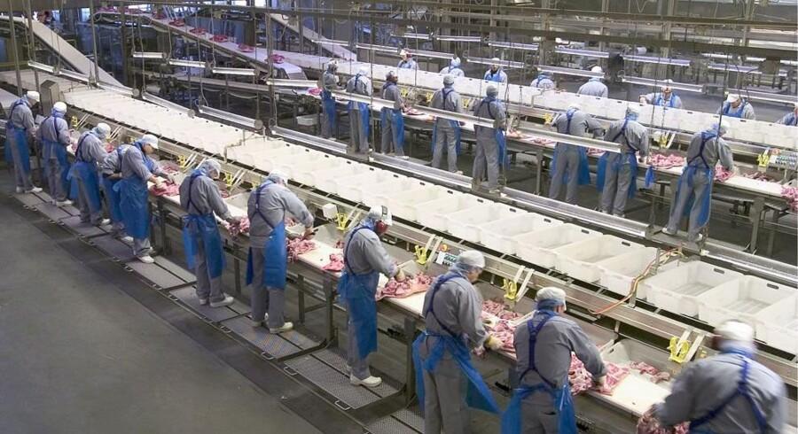 Hvis Danish Crown skal holde slagterierne i gang, er det nødvendigt med tilførsel af flere svin, lyder det fra kødgiganten med hovedsæde i Randers. Free/Danish Crown