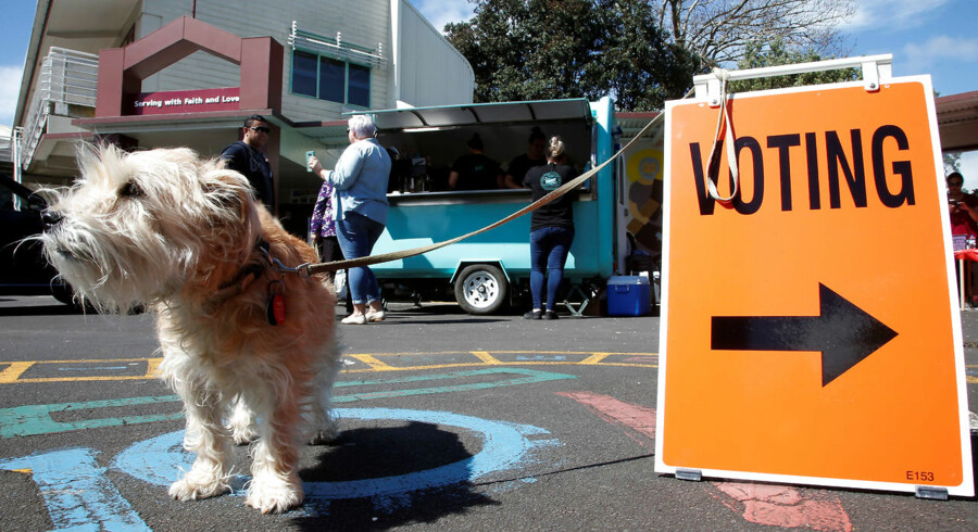 A dog waits outside a polling station during the general election in Auckland, New Zealand, September 23, 2017. REUTERS/Nigel Marple