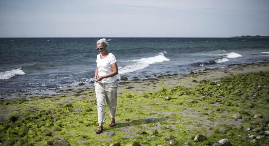 """Else Hviid er netop flyttet tilbage til Danmark efter en årrække i England, hvor hun præst i Den Danske Kirke i London. """"Den danske folkekirke er åben og rummelig. Og det skal den blive ved med at være, for det gør kirken relevant for danskerne"""", siger Else Hviid. Her er hun fotograferet i sit sommerhus på Sejerø."""