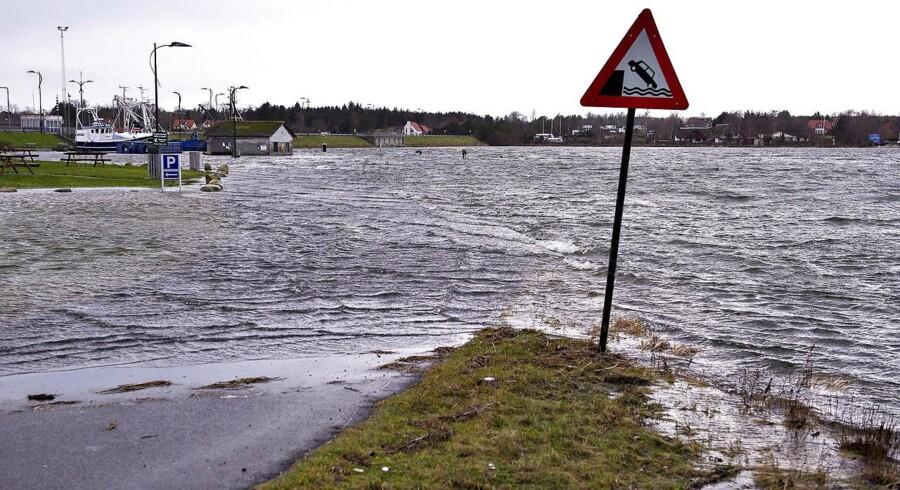 Der er i den vestlige del af Limfjorden risiko for oversvømmelser på grund af stormvejr, der ventes at sætte ind fredag over middag. Foto er fra en oversvømmelse i området i 2015.