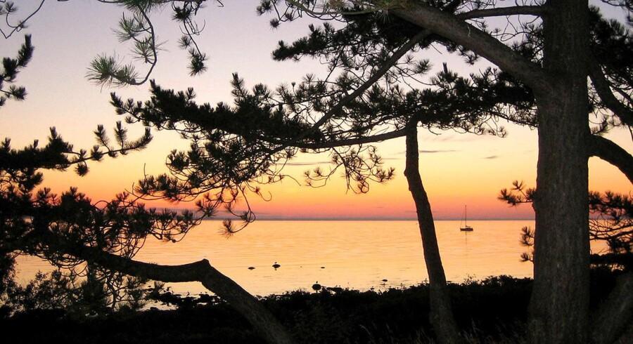 De lange lyse sommernætter gavner måske turismen, men en permanet sommertid vil være hård for danskerne i den mørke vinter, mener Lise Schou.