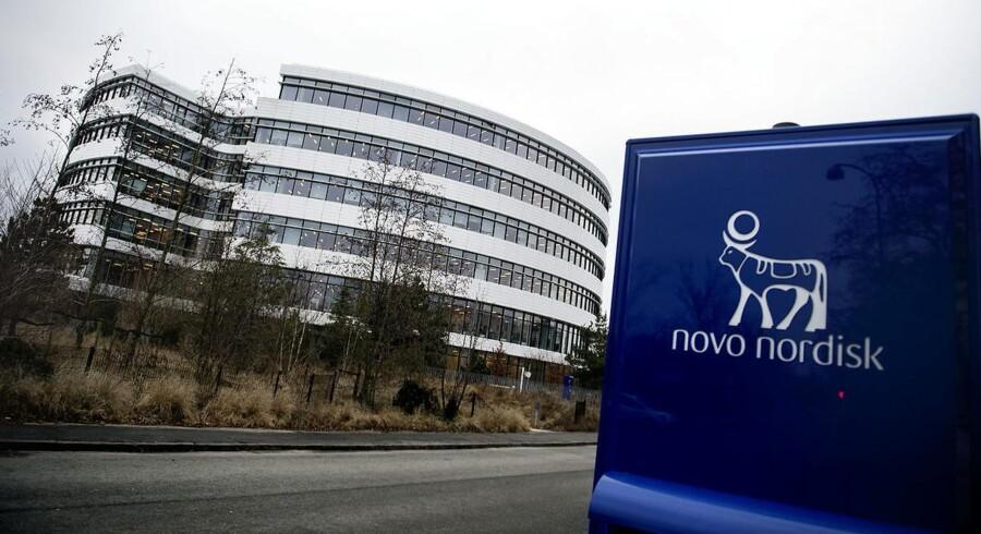 Novo Nordisk-aktien blev voldsomt mindre værd på en enkelt dag i går, torsdag. Men det er ikke startknappen til en ny nedtur, siger eksperter. Arkivfoto: Liselotte Sabroe, Scanpix