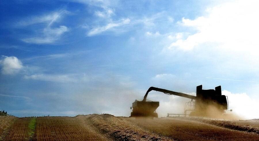 Som et af ganske få EU-lande har Danmark fået lov at medtage kulstofoptag i landbrugsjord i nationale beregninger af vores CO2-reduktioner i de kommende år. Beregningerne er forbundet med »stor usikkerhed«.