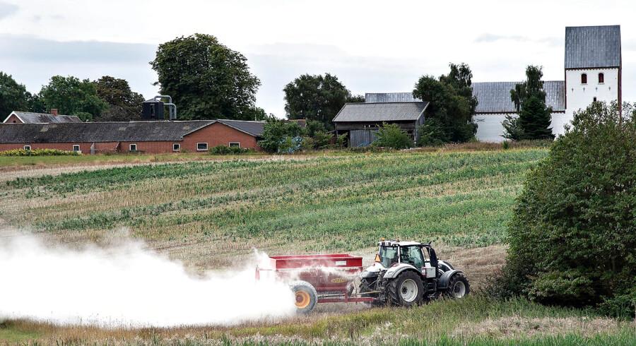 (Arkiv) Det vil være en gevinst for landbruget, hvis den dårligste tredjedel af bedrifterne lukker. (Foto: Henning Bagger/Ritzau Scanpix)