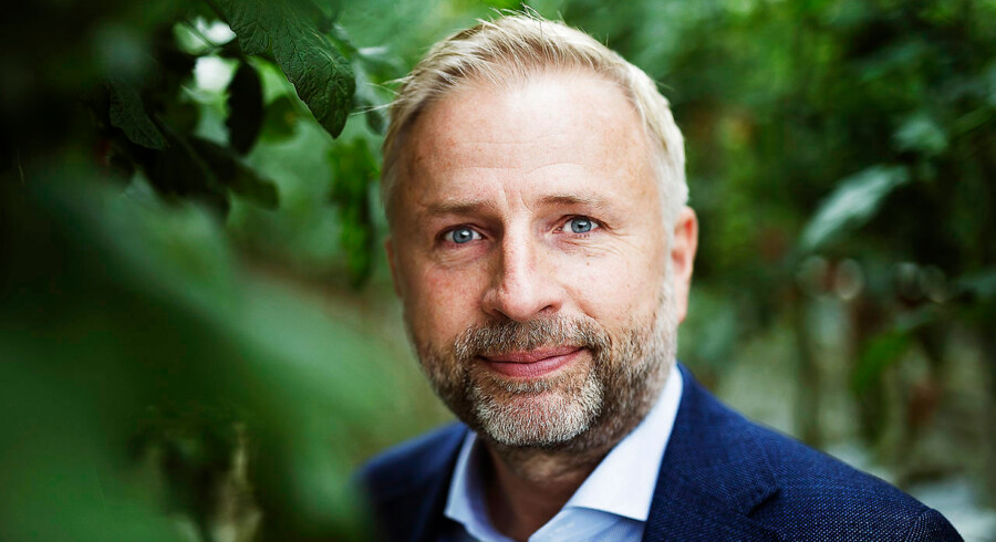 Tomatgartneren Mads Pedersen investerer et trecifret millionbeløb i at opføre Europas største cannabisfarm på Fyn. I Europa er markedet endnu jomfrueligt, men med tiden vil opfattelsen af produktet ændres, og potentialet er derfor enormt, lyder forklaringen.