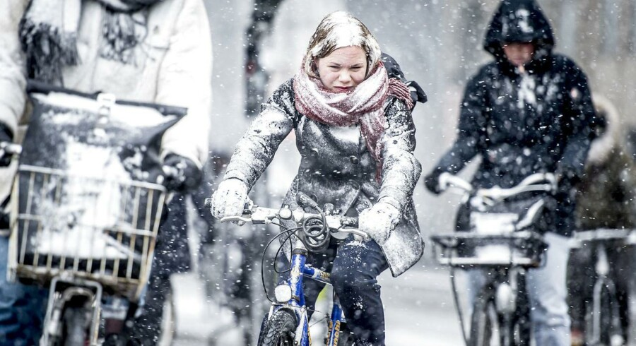 Glæder du dig til at cykle på arbejde sådan her? I givet fald behøver du ikke vente længe. Det er et spørgsmål om tid, før vinteren rammer. (Arkivfoto)