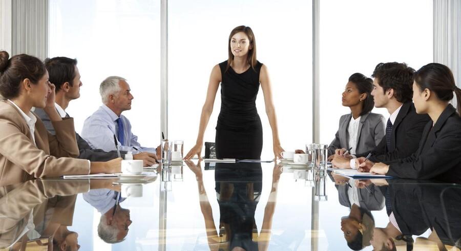 Foto: Iris. Virksomheder med kønsdiversitet i toppen af ledelsen har 47 pct. større afkast på egenkapitalen.