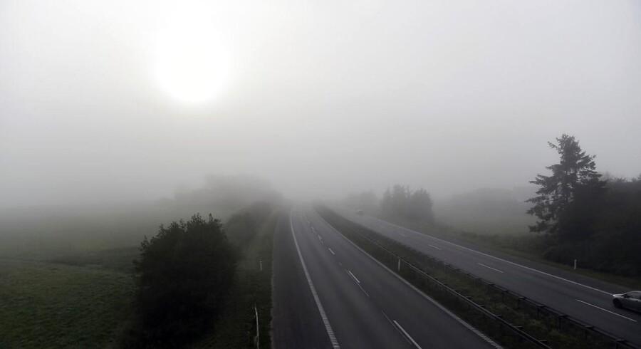 Arkivfoto. Tæt morgen tåge nær Lejre ved Roskilde. Foto: Mads Claus Rasmussen