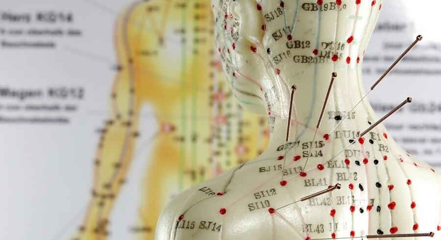 »Som det er nu, er det lovligt for alle at slå sig ned som akupunktører og udbyde nålestik af brystkassen som behandling. Også uden at have hverken uddannelse, erfaring eller kendskab til kroppens faresignaler ved fejlbehandlinger,« skriver Inge Møllehave.