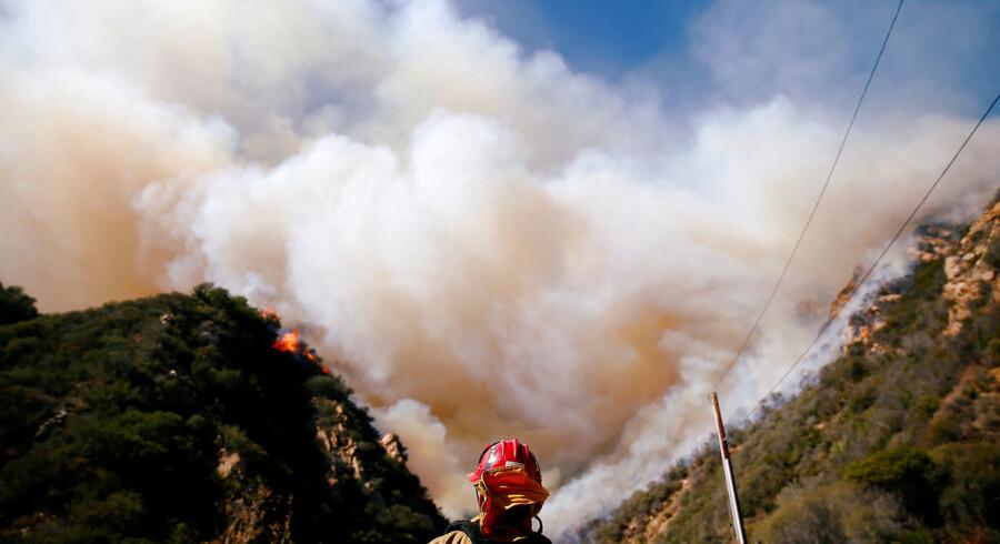 Skovbrandene fortsætter med at hærge i Californien. De voldsomme brande har nu også bredt sig til statens nordlige skovområder. De har kostet mindst 23 mennesker livet. På billedet ses en brandmand, der prøver at slukke »Woolsey Fire« i Malibu.