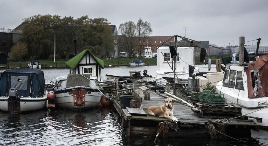 Københavns Kommune har givet beboerne i de godt 60 både og bådvrag folkeregisteradresse i Fredens Havn, selvom Kystdirektoratet for tre år siden kendte bådkolonien ulovlig. Det er en krænkelse af retsbevidstheden, mener DF, der torsdag den 8. november kaldte justitsminister Søren Pape Poulsen (K) og miljø- og fødevareminister Jakob Ellemann-Jensen (V) i åbent samråd om Fredens Havn. Heraf fremgik det, at det vil koste 26 millioner kroner at rydde »den flydende fristad«.