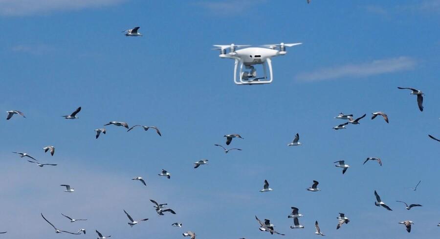 Selv om de fleste hobbydroner ikke vejer meget mere end et kilo, kan de skabe alvorlig ravage for flytrafikken.