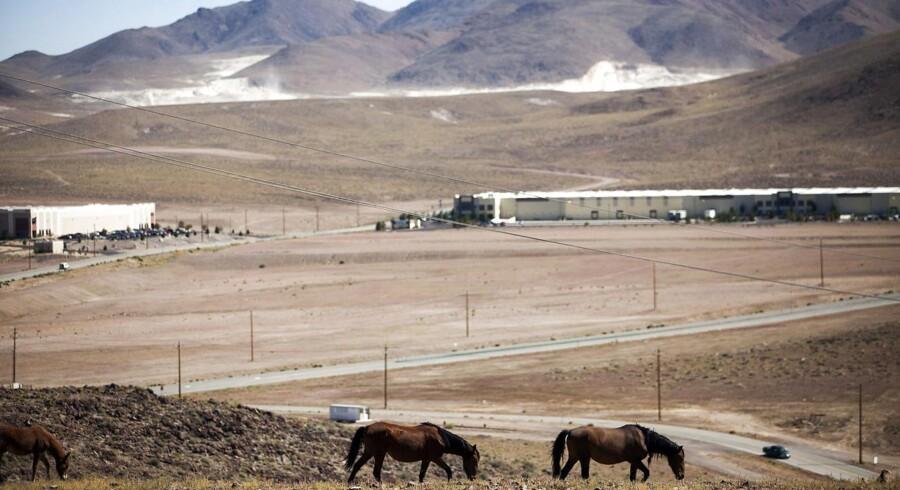 Det er på denne grund i ørkenen i Nevada, at Tesla allerede er i fuld sving med at opføre en gigantisk fabrik.