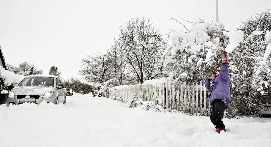 Esther Laub Ahlmann Olesen rydder sne. Snevejr og snerydning i Kirke Eskilstrup