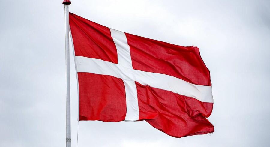 Debatten om hvorvidt Dannebrog er et politisk ladet symbol er blusset op igen, efter en undersøgelse af spejderorganisationen FDFs logo viste, at 36 procent af de adspurgte opfattede logoet som værende »nationalistisk«.