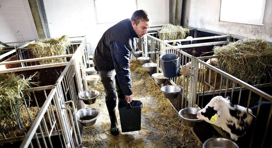 Det er en bedre idé at fortsætte med at effektivisere i landbruget og på den måde sænke Co2-udledningen, mener Landbrug & Fødevarer.