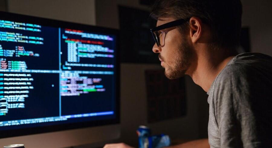 Det er nu så svært at skaffe IT-folk med de rigtige kundskaber i Danmark, at 43 procent af alene de danske IT-virksomheder har måttet udskyde deres videreudvikling. Foto: Iris.