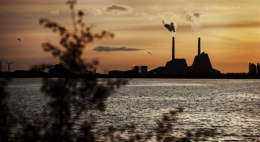 Avedøreværket uden for København er et af de mange kraftværker, som er blevet konverteret til biomasse.
