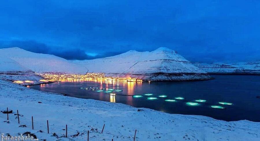 Et af Bakkafrosts havbrug?i en færøsk fjord. PR-foto