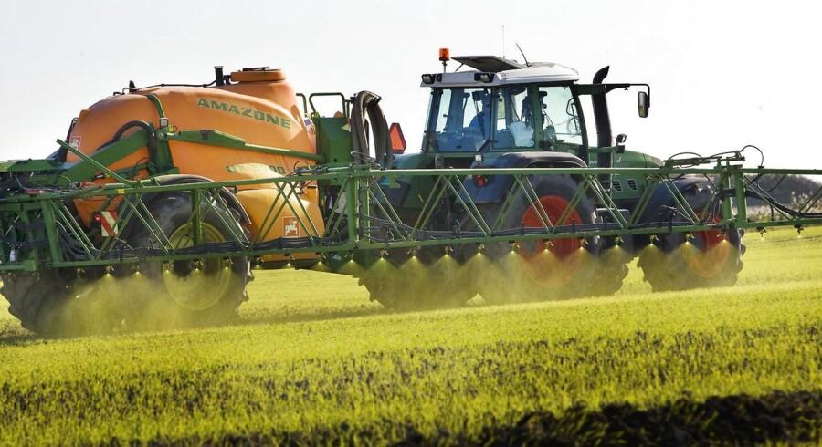 Nye tal fra rådgivningscenteret Sege afslører, at omkring hvert syvende landbrug befinder sig i en konkursmæssig højrisikozone, hvor bankerne fristes til at give op.