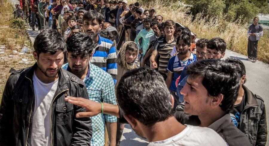 Flygtningestrøm på den græske ø Lesbos. Folk står i kø for at få udleveret mad. (Foto: Søren Bidstrup/Scanpix 2015)
