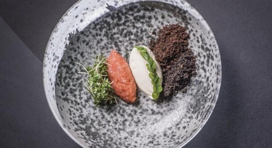 Restaurant MES på Jamers Plads i København får 5 stjerner af Berlingskes anmelder.