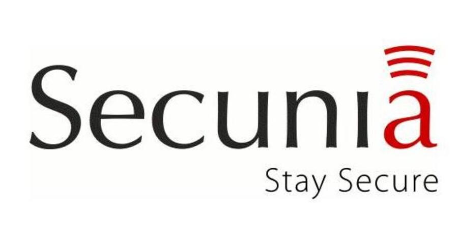 Danske Secunia er sat på liste over de seks bedste IT-sikkerhedsfirmaer.